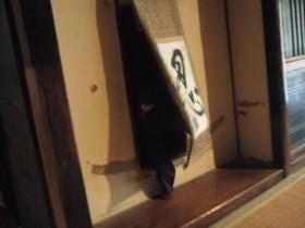 甲賀忍術村 忍者屋敷