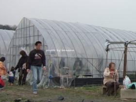 川西観光農園 苺ビニルハウス