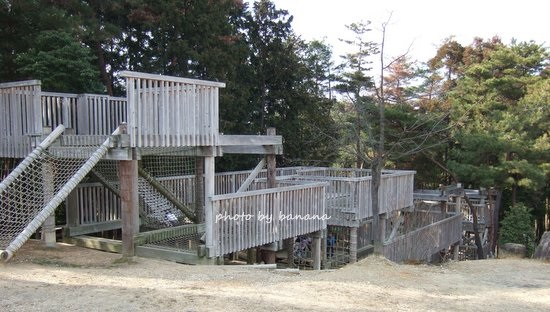 京都府立山城総合運動公園 冒険の森 アスレチック