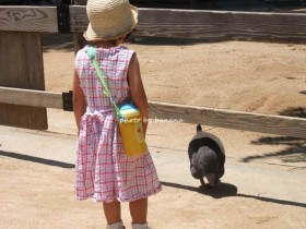 王子動物園 ふれあい