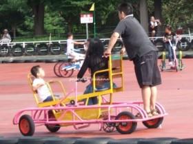 兵庫県立播磨中央公園おもしろ自転車 シーソー