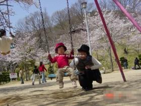 摂津峡公園 お花見4