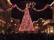 子供と行く東京ディズニーランドのクリスマス