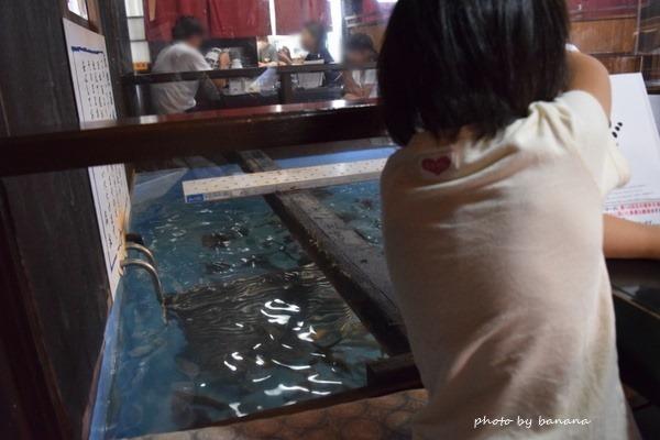 鳥取賀露港 かろいち敷地内 いけす海陽亭