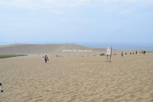 子供と一緒に鳥取砂丘観光