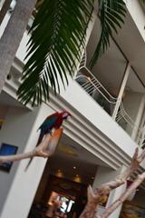 ルネッサンスリゾートオキナワ 子供と一緒の沖縄旅行