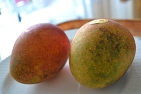 おんなの駅なかゆくいで買ったマンゴー