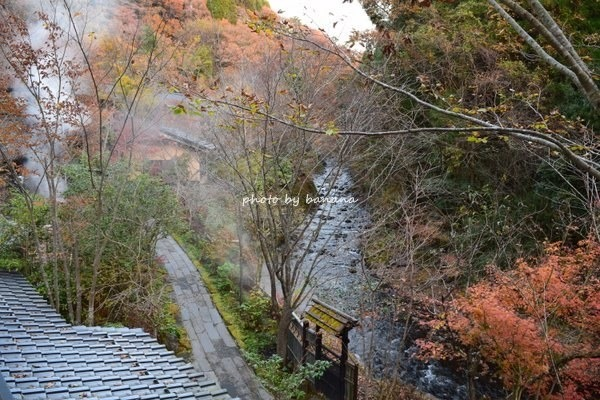 黒川温泉 奥の湯 紅葉