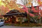 子連れ一緒熊本大分観光旅行・黒川温泉