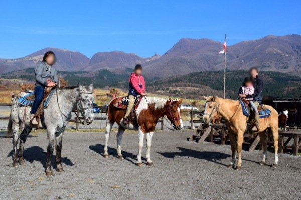 阿蘇・子どももできる乗馬体験
