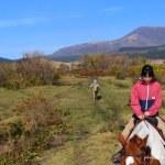阿蘇 子どももできる乗馬体験 口コミ
