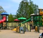 京都府立丹波自然運動公園 こどもの広場 遊具