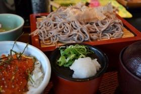 日本海さかな街 ますよね 出石蕎麦