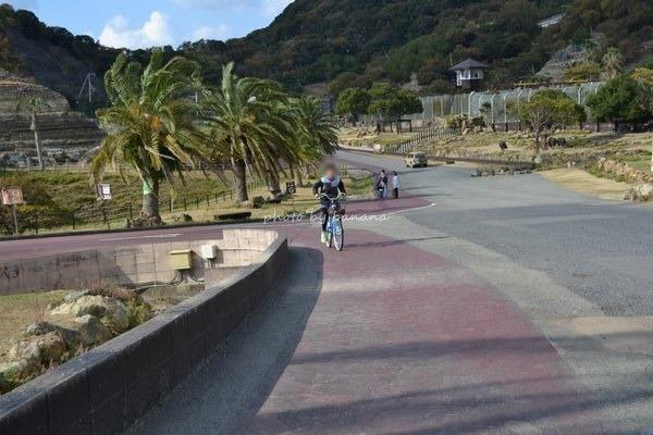 アドベンチャーワールド 自転車サファリ