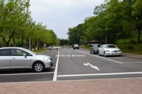 大泉緑地 駐車場