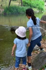 大泉緑地 水遊び