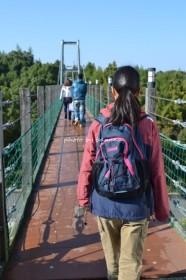 ハーベストの丘・怖い吊り橋