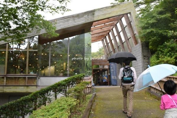 大阪府高槻市ホタル観賞スポット送迎付きツアー 高槻森林観光センター