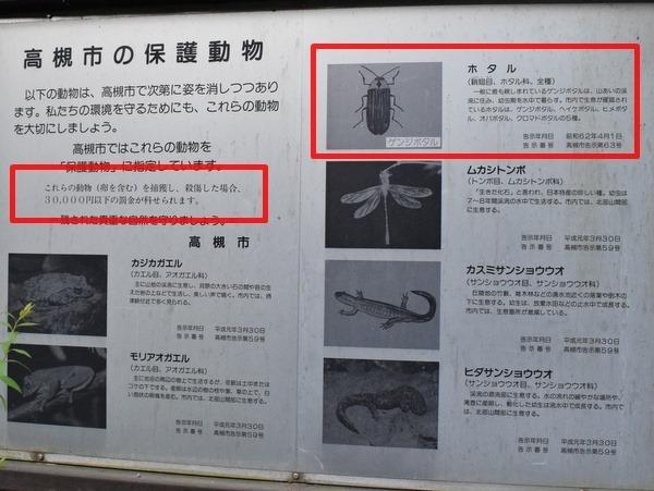 高槻森林観光センター ホタル観賞スポット