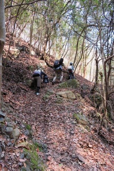 妙見山 小学生ハイキング 大堂越コース