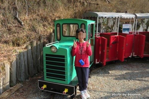 妙見山 シグナス森林鉄道