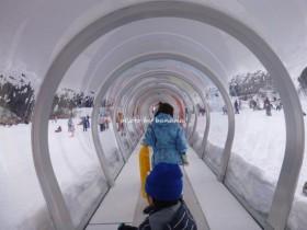 奥伊吹スキー場 キッズゲレンデ 歩く歩道