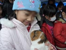京都市動物園 小動物ふれあい うさぎ