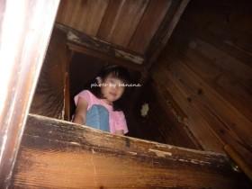 甲賀流 忍者屋敷 隠れ梯子2階