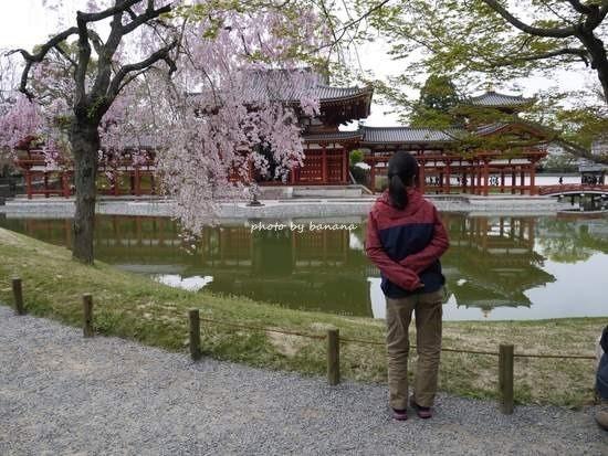 平等院鳳凰堂 小学生 京都観光