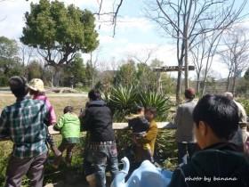 天王寺動物園 サバンナ