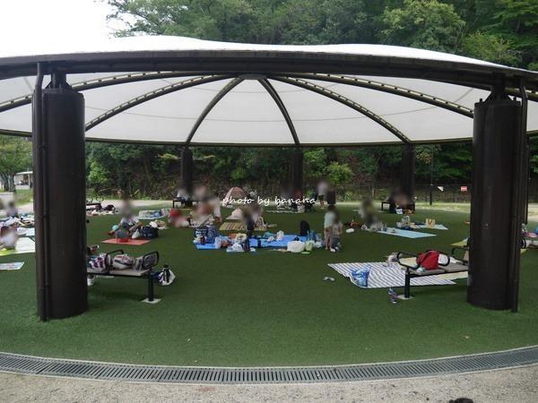 京都市宝ヶ池公園子どもの楽園 休憩場所