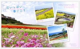awaji-hanasajiki