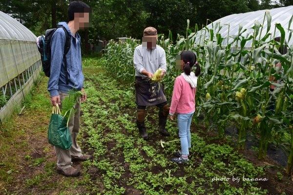 中札内農村休暇村フェーリエンドルフ 旅行記宿泊機ブログ 北海道コテージ