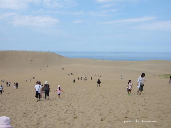 子供と行くおすすめ観光鳥取砂丘