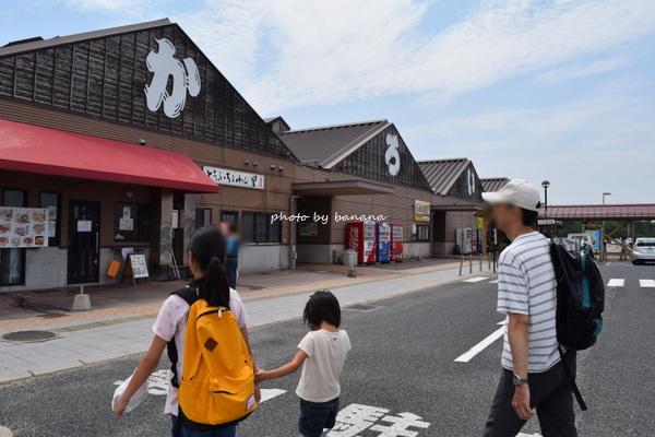 鳥取賀露港 かろいち