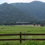 蒜山高原ジャージーランド 観光口コミブログ