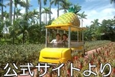 名護市で遊べるところ ナゴパイナップルパーク