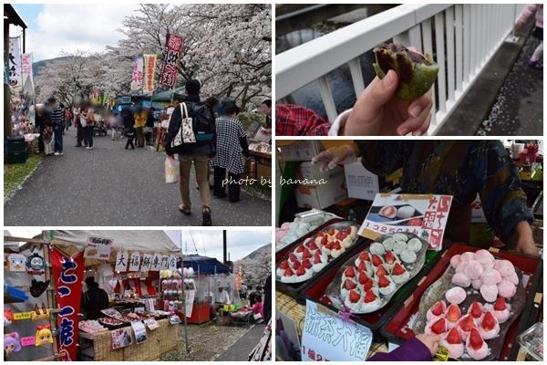 甲賀市鮎河うぐい川千本桜 さくらまつり